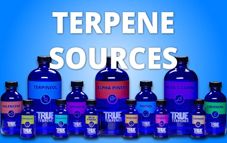 Terpene Sources Photo of True Terpenes Bottles